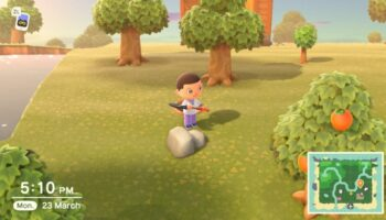 How to grow trees - Animal Crossing New Horizons