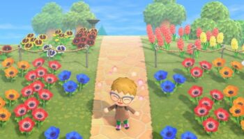 Unobvious things in Animal Crossing: New Horizons
