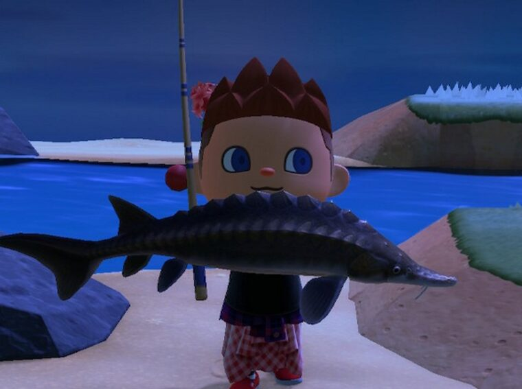 How to catch Sturgeon - Animal Crossing New Horizons